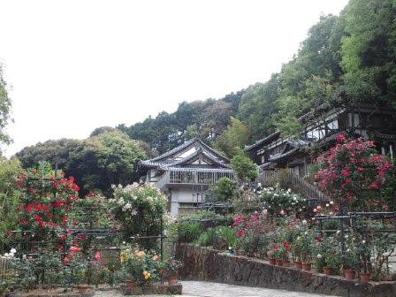 奈良お散歩コース@松尾寺_e0101203_12232555.jpg