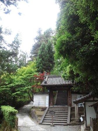 奈良お散歩コース@松尾寺_e0101203_12242596.jpg