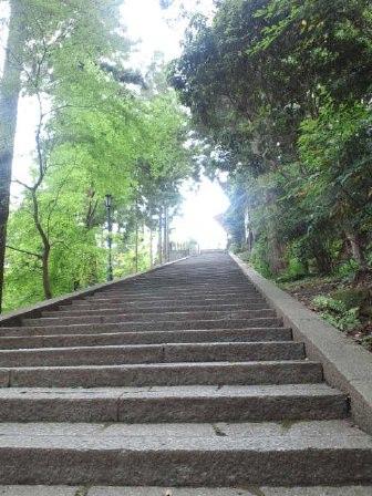 奈良お散歩コース@松尾寺_e0101203_1224868.jpg