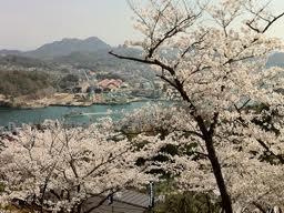 広島県の家庭教師個人契約_e0192724_19361335.jpg