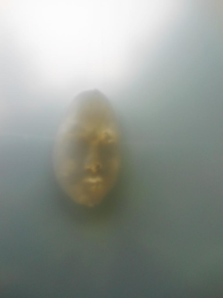 1785) 「梅田マサノリ 『記憶を探す通路』」 門馬 6月1日(金)~6月13日(水)  _f0126829_15514277.jpg