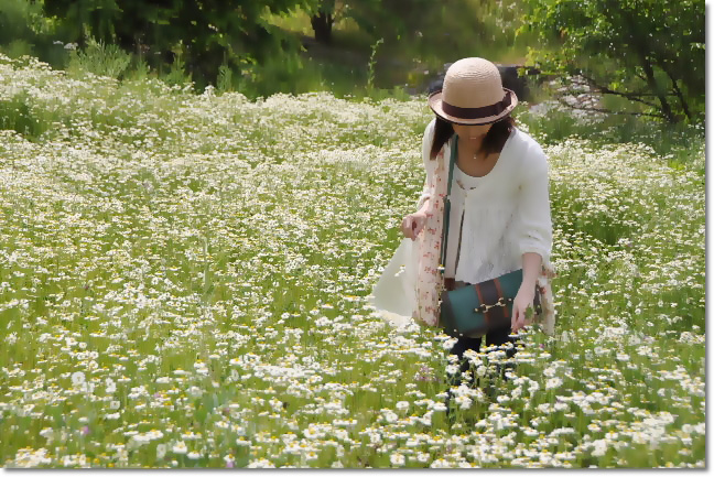 夢農場~姫川源流へ_b0053765_21383758.jpg