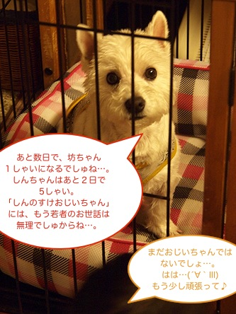 b0177868_1593343.jpg