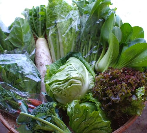 今週の野菜セット(6/5~6/9着)_c0110869_1433421.jpg