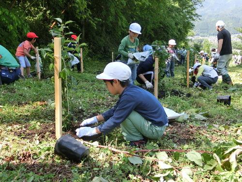 小学校入学記念植樹祭をしました!_c0238069_13164362.jpg