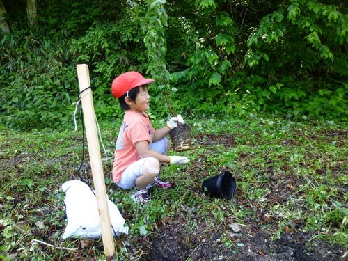 小学校入学記念植樹祭をしました!_c0238069_1318795.jpg