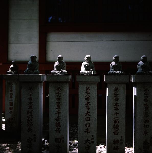 高尾山 フレクサレット_f0115475_2014275.jpg