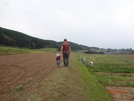自然農_a0122198_1564311.jpg