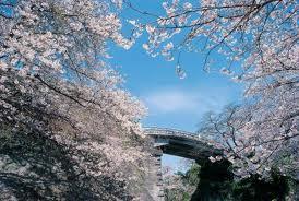 長崎県の家庭教師個人契約_e0192724_245755.jpg
