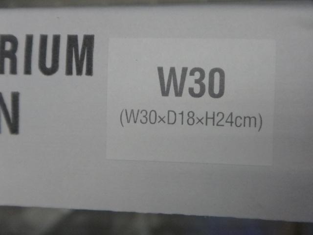ADA キューブガーデンミニS W30_e0181866_139475.jpg
