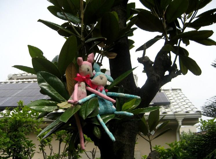 バンビ物語♪   _c0009275_0533949.jpg