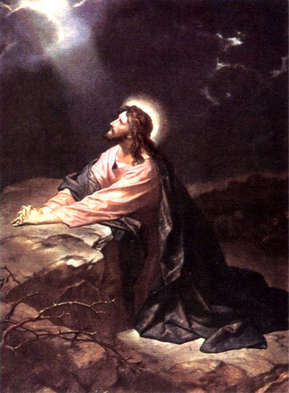 6月5日詩篇10‐13篇『助けを求める祈り』_d0155777_836104.jpg