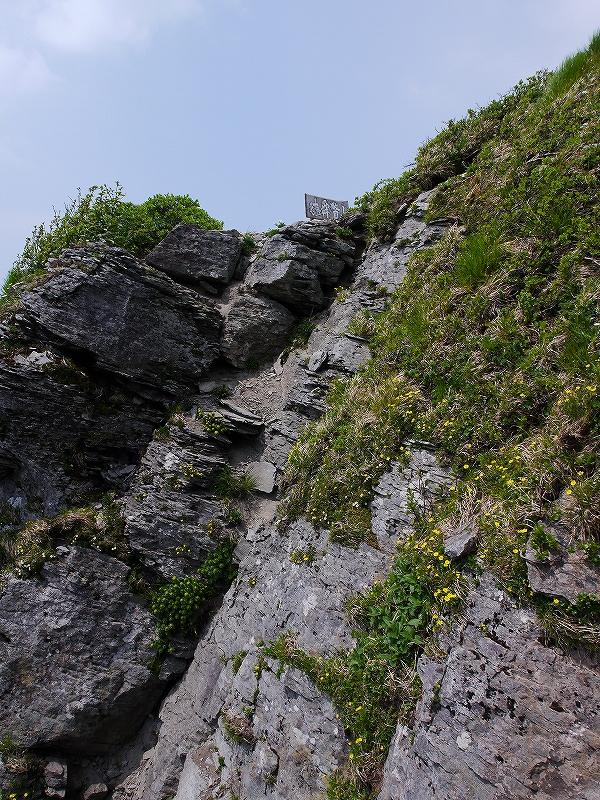 6月5日、徳舜瞥山とホロホロ山_f0138096_2334126.jpg
