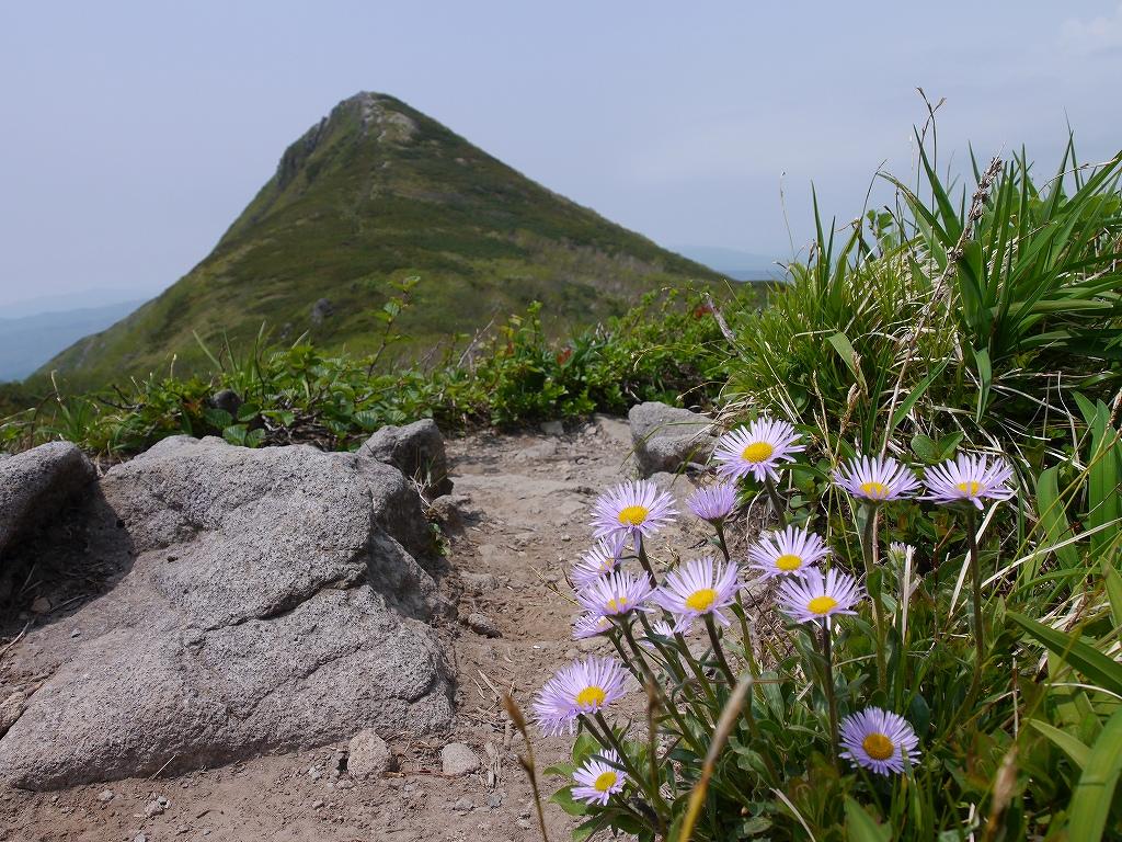 6月5日、徳舜瞥山とホロホロ山_f0138096_23344575.jpg