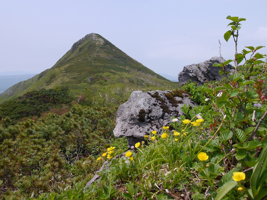 6月5日、徳舜瞥山とホロホロ山_f0138096_2335380.jpg