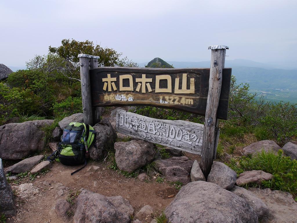 6月5日、徳舜瞥山とホロホロ山_f0138096_23355038.jpg