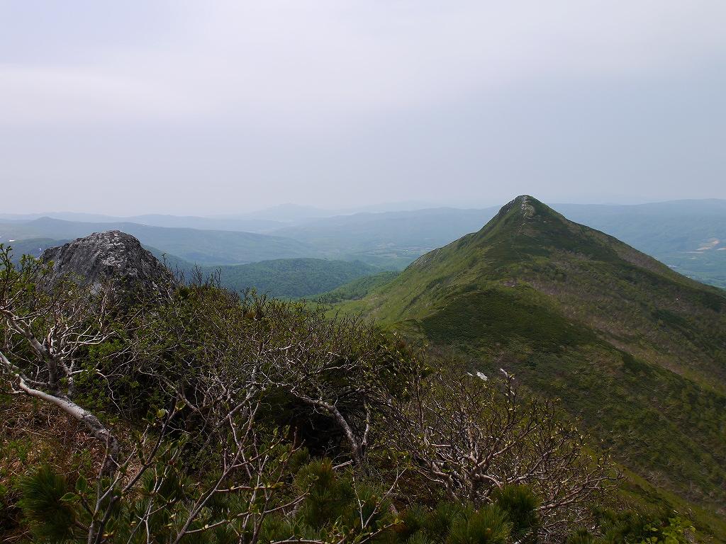 6月5日、徳舜瞥山とホロホロ山_f0138096_233618100.jpg