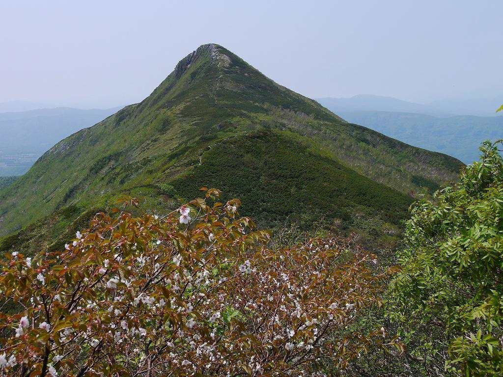 6月5日、徳舜瞥山とホロホロ山_f0138096_23364019.jpg