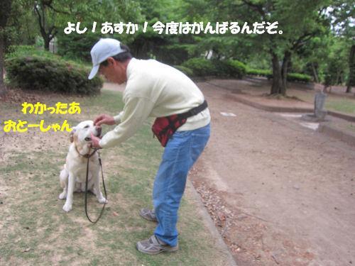 f0143123_20432195.jpg