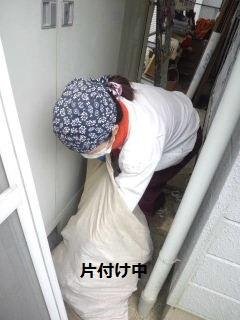 リフォーム2日目_f0031037_2050726.jpg