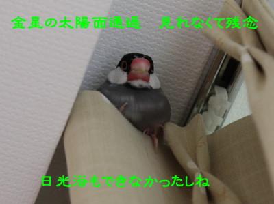 b0158061_2057395.jpg