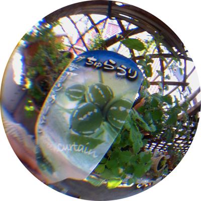 d0015006_19155043.jpg