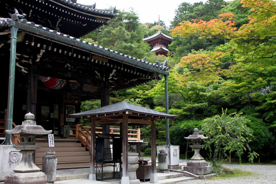 今熊野観音寺 みどりしたたる_e0048413_21212341.jpg