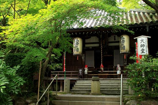 今熊野観音寺 みどりしたたる_e0048413_2121333.jpg
