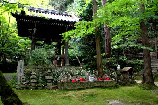 今熊野観音寺 みどりしたたる_e0048413_21214410.jpg
