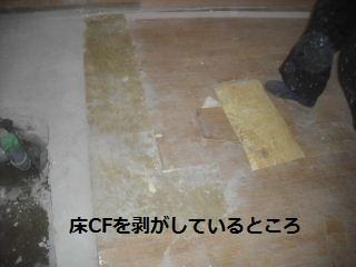 リフォーム3日目_f0031037_21143311.jpg