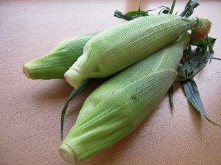 旬の野菜_f0129627_1631349.jpg