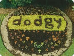 a Brit shortie expression \'\'dodgy\'\'_c0215031_22473536.jpg