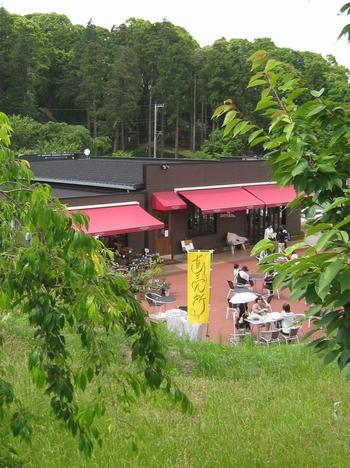 一夜城 Yoroizuka Farm_c0134734_1302061.jpg