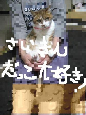 e0255638_16582380.jpg