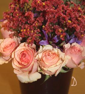 Rose_d0110462_17273626.jpg
