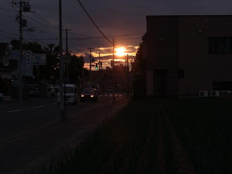 キングサリ アブラナ タマネギ畑と母校の夕日_c0025115_2135482.jpg