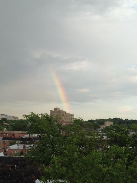 虹が続きますね~_f0095325_2045994.jpg