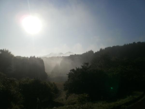 「ヴィーナスのお散歩」の日の空・・Ⅰ_a0174458_8294852.jpg
