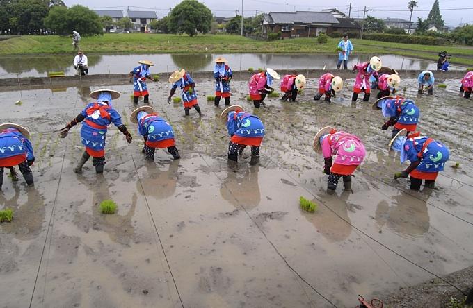 太宰府の御田植祭に行ってきました。_a0037907_20185726.jpg