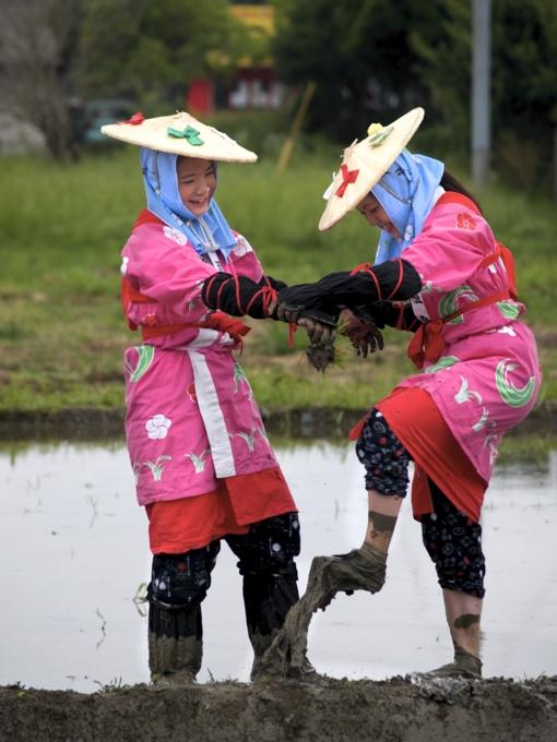 太宰府の御田植祭に行ってきました。_a0037907_20292274.jpg