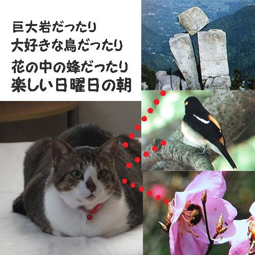 f0032418_157572.jpg
