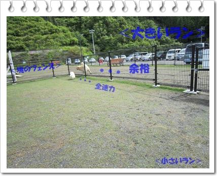 b0167519_17112972.jpg