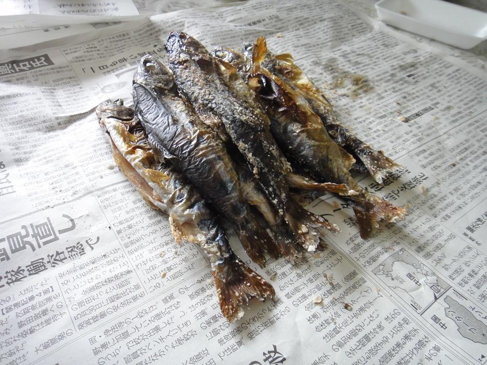 八坂神社例祭_c0111229_17132456.jpg