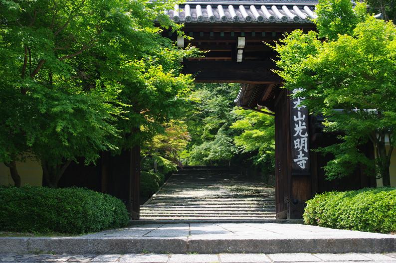 新緑の光明寺..._f0152550_18295997.jpg