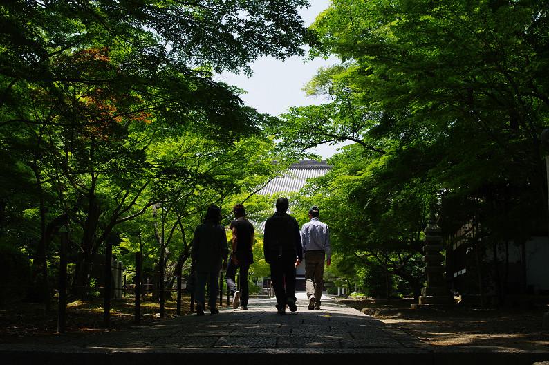 新緑の光明寺..._f0152550_18301176.jpg