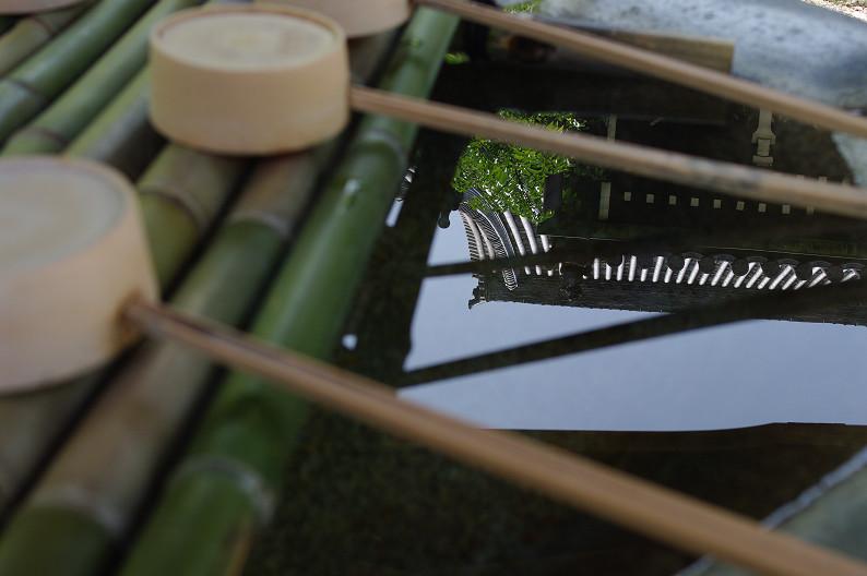 新緑の光明寺..._f0152550_18304077.jpg
