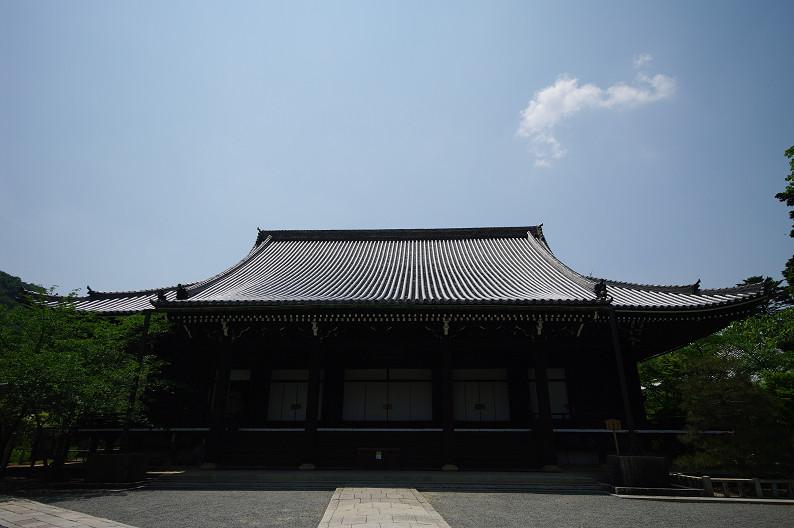 新緑の光明寺..._f0152550_18305616.jpg