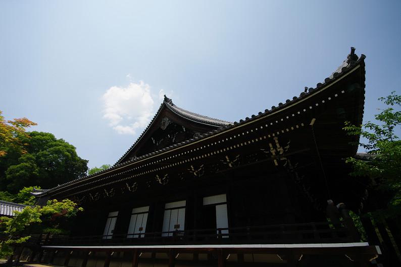 新緑の光明寺..._f0152550_1831237.jpg