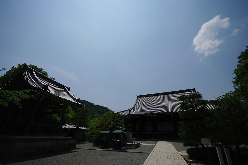 新緑の光明寺..._f0152550_1831734.jpg