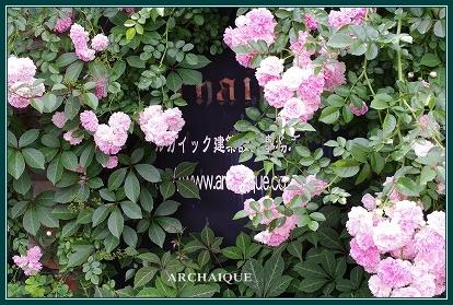 幸福スイーツアルカイック ならまち店 薔薇咲く!!_c0207890_0192191.jpg